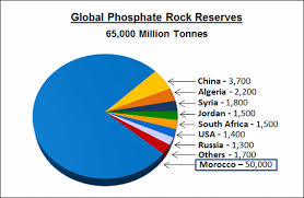phospahte supply and reserves